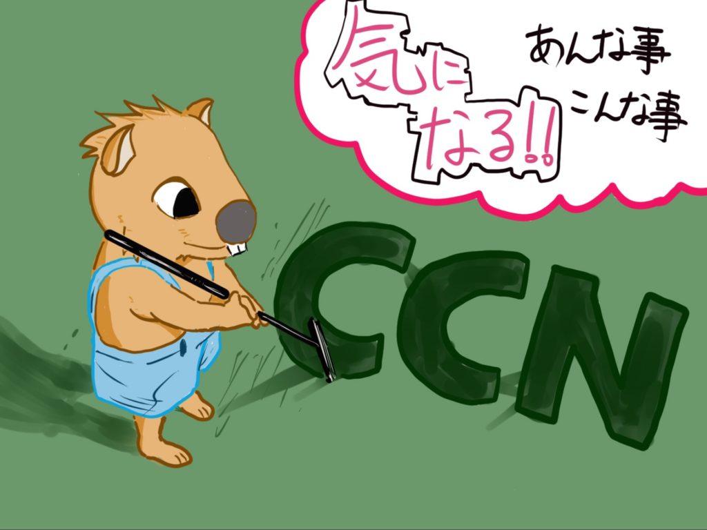 CCNの可能性☆ぶっちゃけこんなトコどうなんですか?